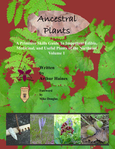 Photo of Ancestral Plants by Arthur Haines