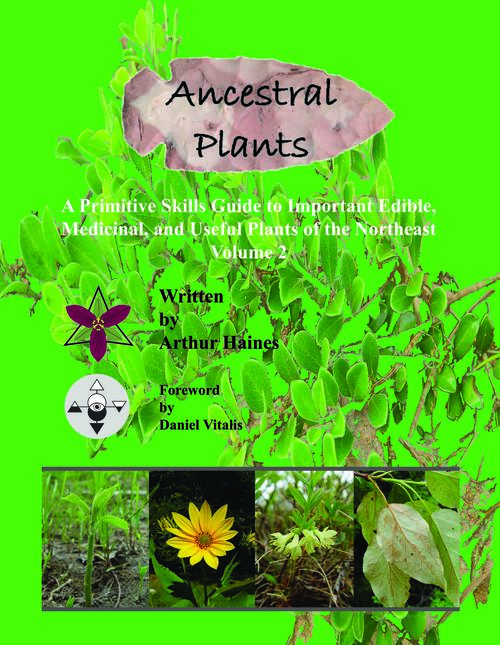 Photo of Ancestral Plants (Vol. 2) by Arthur Haines