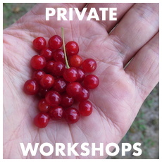 Private Workshops