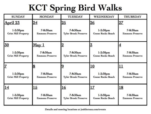 Image of KCT Spring Bird Walks Calendar